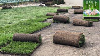 Наша Дача 2018 (7) Рулонный газон(, 2018-05-12T23:12:49.000Z)