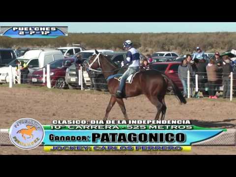Turf - PUELCHES - LA PAMPA - 2-7-17 - Fotochart Fernandez
