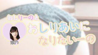 番組概要> ミス東スポ2015 グランプリのおしりーのこと璃乃ちゃんが、...