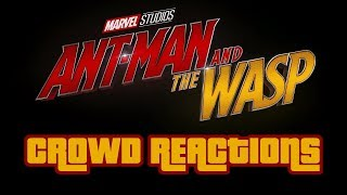 Ant-Man and the Wasp • FUNNY MOMENTS • Audience Reaction (Spoilers)