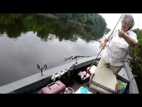 Wateree River Fishing with Capt Buster &...