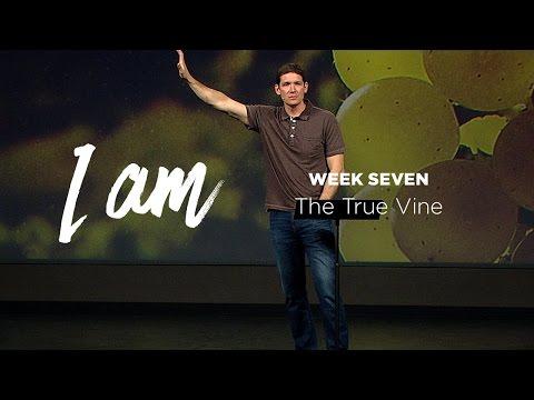 I Am (Part 7) - The True Vine