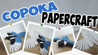Как сделать птицу-сороку из бумаги | papercraft |