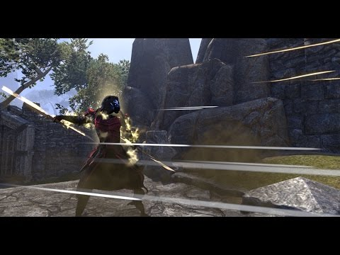 The Elder Scrolls Online Let's Talk; Dual Wield