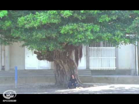Cocco - 陽の照りながら雨の降る 【VIDEO CLIP SHORT】
