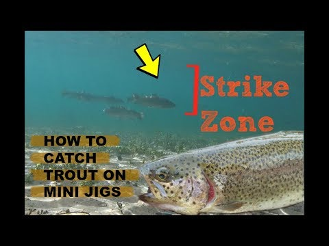 How To Catch Trout On A Mini Jig