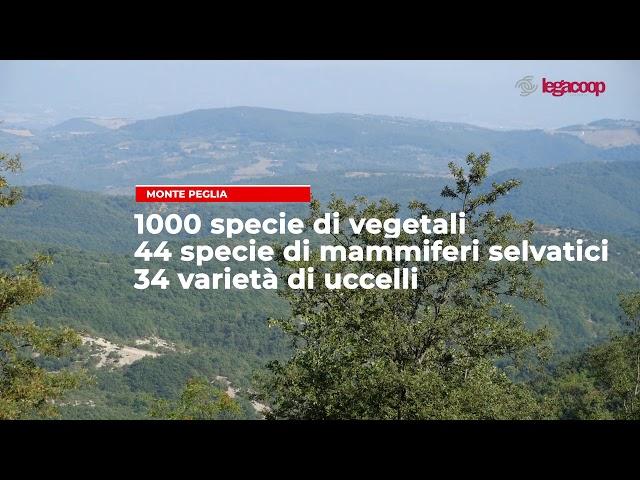 Cooperativa di comunità Monte Peglia Legacoop Umbria