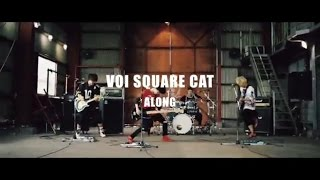 VOI SQUARE CAT - ALONG