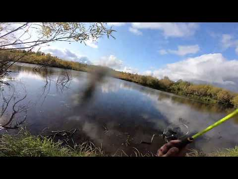 видео: Щучий жор,Рыбалка на озере детства..