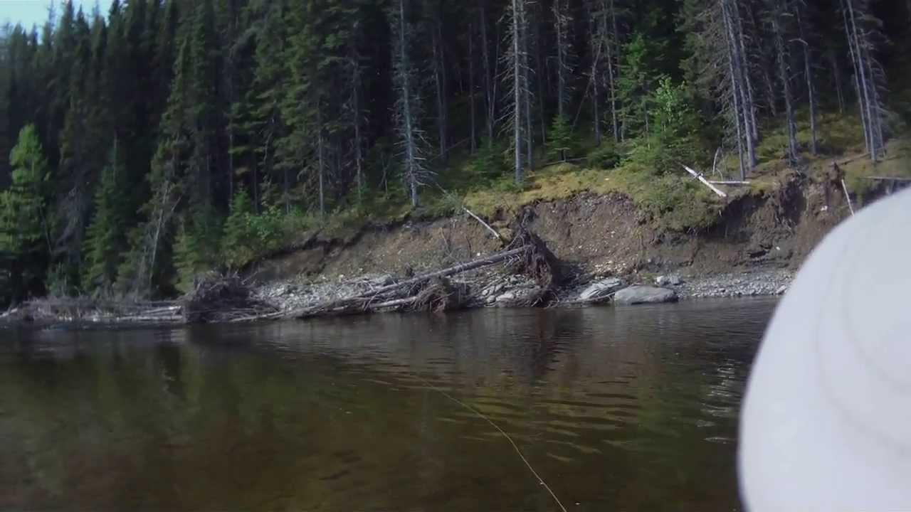 La pêche sur les lacs de la toundra de vidéo