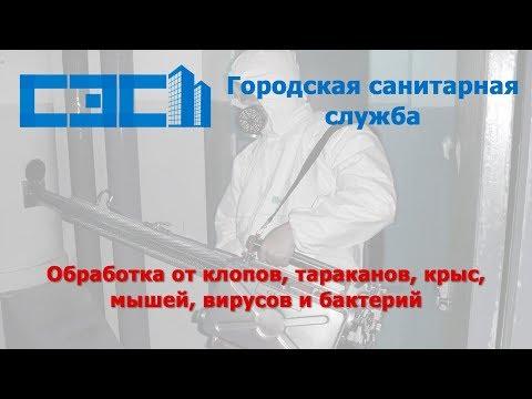 Работа Санитараной Экологической Службы в СПб