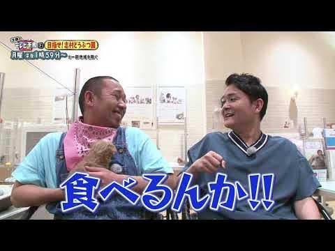 【テレビ千鳥】可愛いワンちゃんと戯れたいんじゃ! 6/17放送