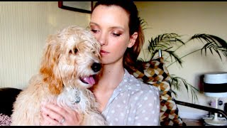 Shoe Haul, ASOS Sale and my Crazy Pets!  | A Model Recommends