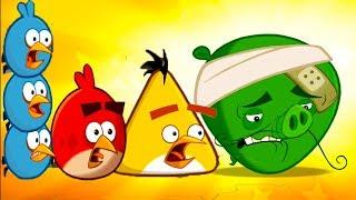 Angry Birds 2 #1 приключение мультик героев Bad Piggies и энгри бердс #КРУТИЛКИНЫ