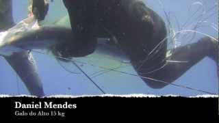 PESCA SUB - Galo 15kg, Bicudas, Serras, (27/02/2012 - Natal RN)