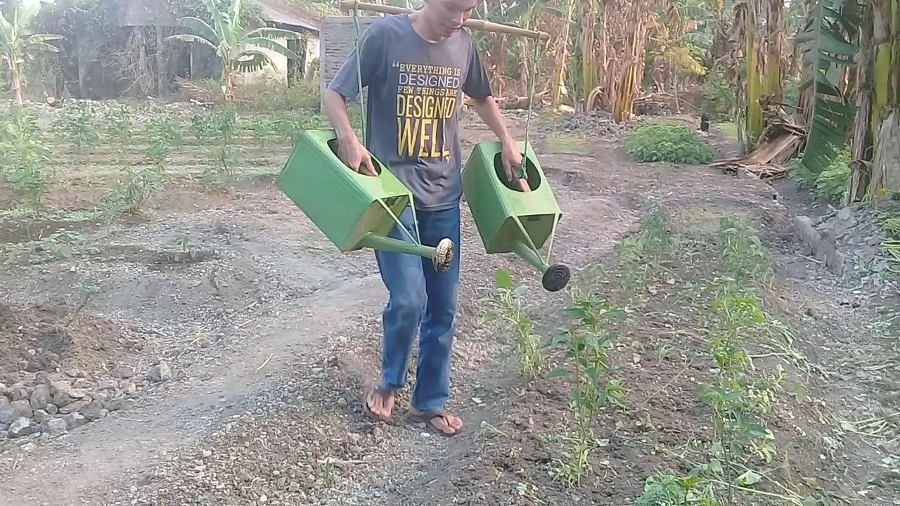 Download NYIRAM KEBUN CABE