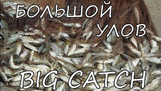 Рыбалка Кастинговой Сетью Лучший улов top 7 casting net catches