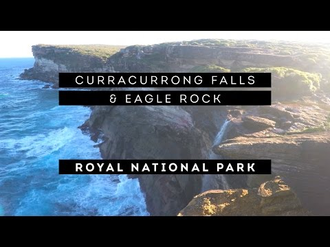 Weekly Vlog #4 | Sydney Royal National Park Hike | Curracurrong Waterfall