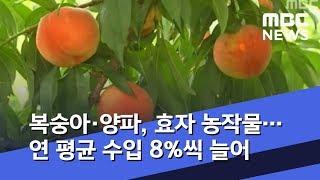 [뉴스터치] 복숭아·양파, 효자 농작물…연 평균 수입 …