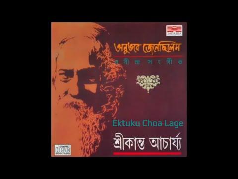 Ektuku Choa Lage | Srikanto Acharya | Best of Tagore Songs