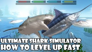 Ultimate Shark Simulator -How to Level Up Fast- Android/iOS - Gameplay
