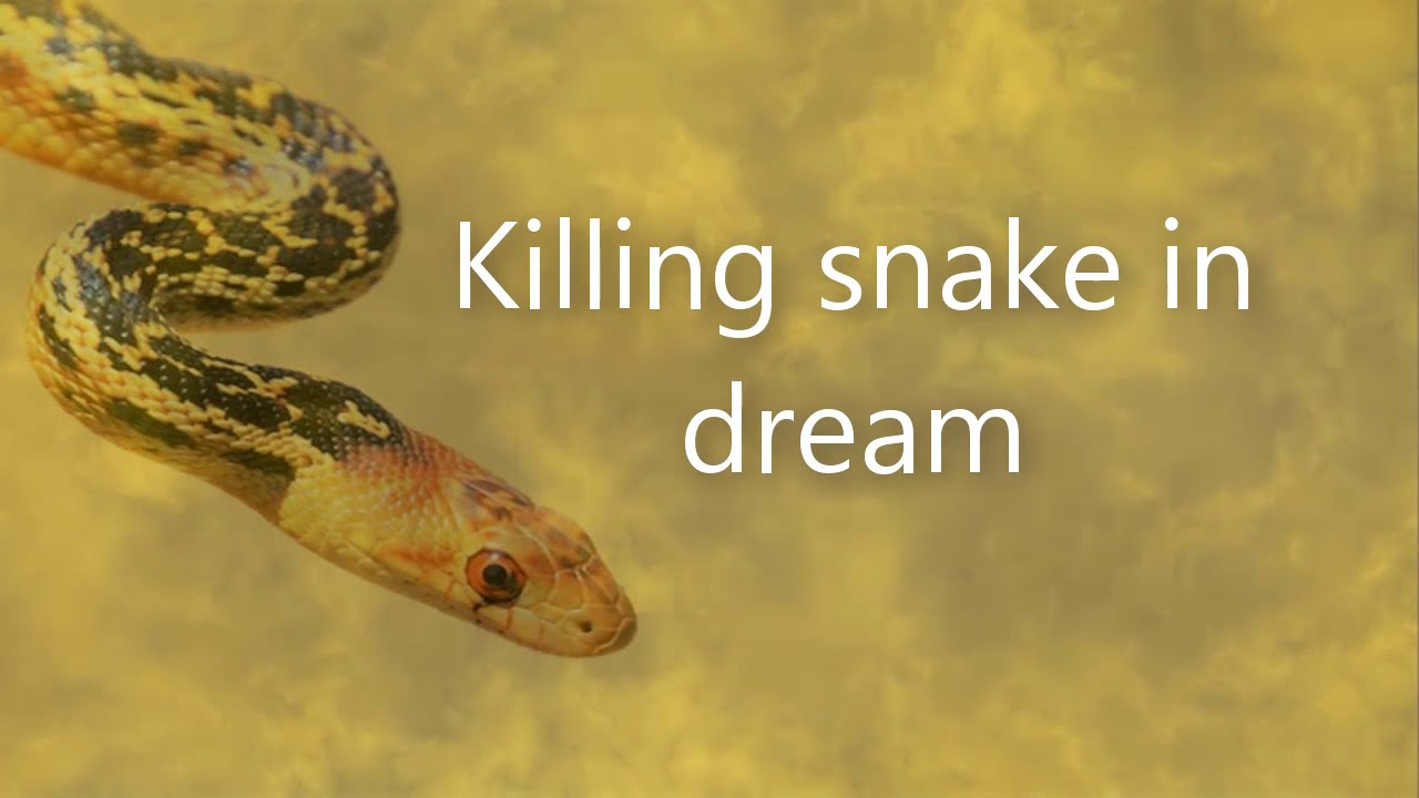 Killing Snake In Dream Dreams Meaning And Interpretation Youtube