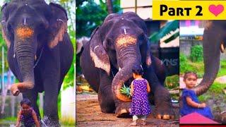 Elephant & Kid Love ❤️ Part2 วิดีโอรักช้างเด็ก   കേരളത്തിലെ ആനകൾ   हाथी का प्यार   ಆನೆ ಪ್ರೀತಿ ವೀಡಿಯೊ