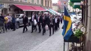Nationaldag. Stockholm 2015.