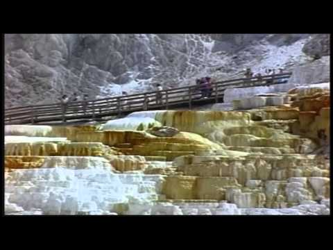 Tourists at Yellowstone National Park Free Stock Footage