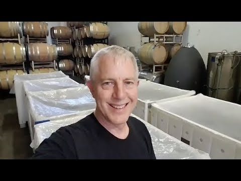 Sonoma Open For Business | Inspiration Vineyards
