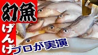 幻魚(げんげ)のさばき方「唐揚げ・一夜干し」(Porous-head eelpout)