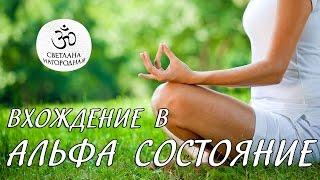 Отзыв о методе Сильва - Антон Привольнов