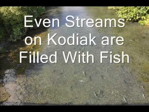 Best Fishing Location on Earth   Kodiak Island Fishing