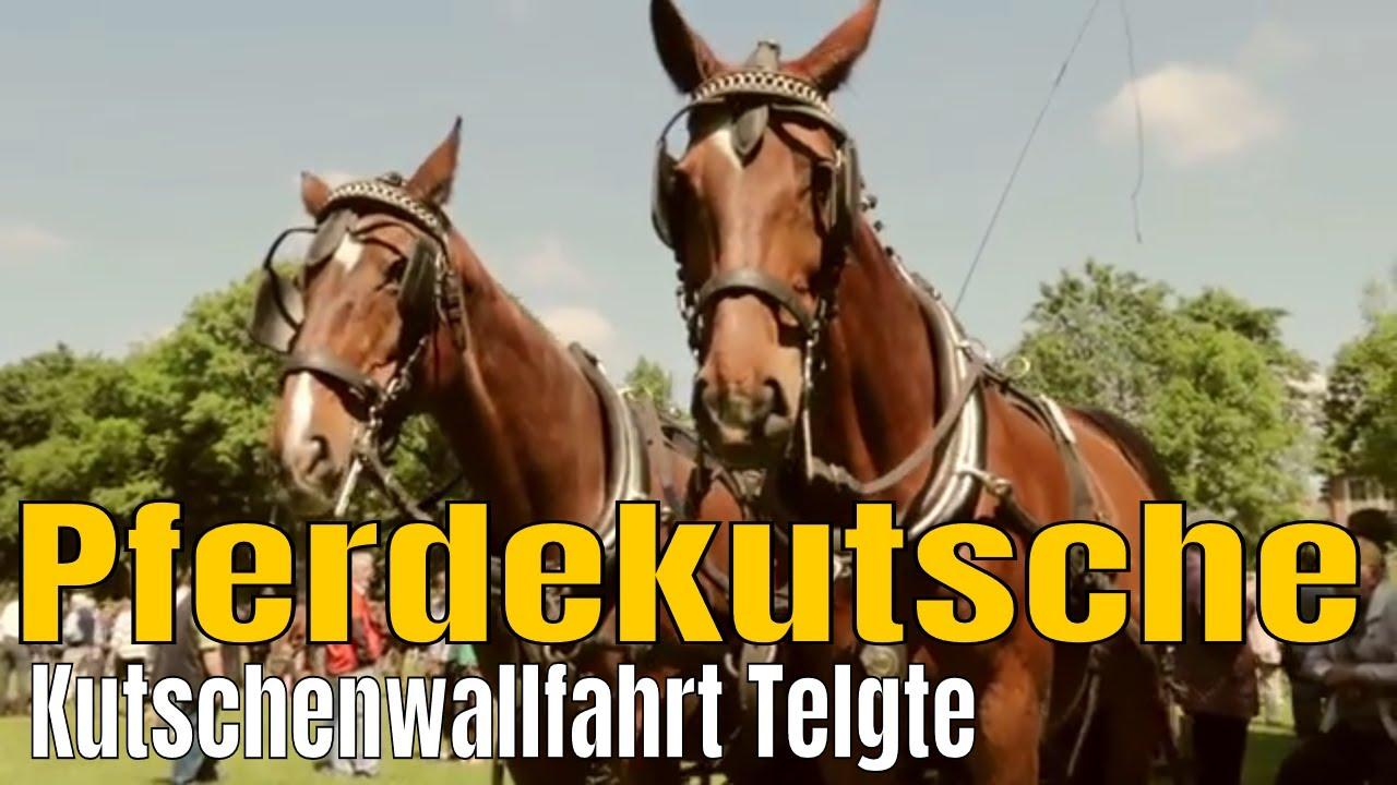 Reit- & Fahrsport Pferdekutsche