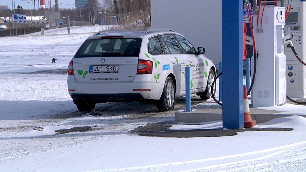 d08e77871ac Motors24 proovisõit - Škoda Octavia G-TEC gaasiauto - Motors24 TV - Uudised  - motors24.ee