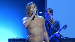 "Iggy Pop ""Tonight"" Chicago, IL 4-6-2016"