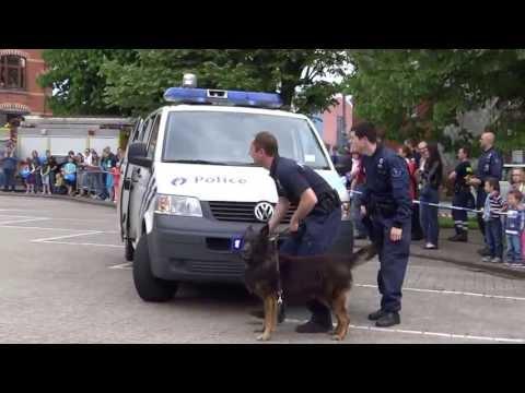 Les chiens de la police