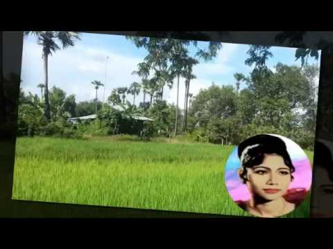 Ros sereysothea | Reat Triy Thiy Muoy | Khmer Old Song | Cambodia Music MP3  2015 music mp3