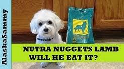Nutra Nuggets Dog Food Lamb and Rice