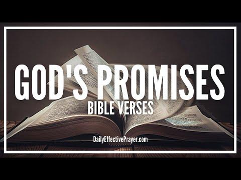 Bible Verses On God's Promises | Scriptures For God's Promises (Audio Bible)