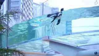 サンシャイン水族館では7/20~9/2 18:30~19:30にアクアリングをペン...