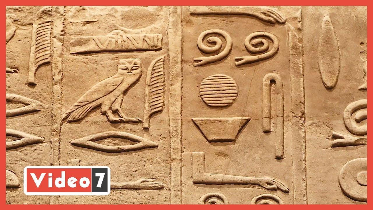 وصفات فرعونية لازال يستخدمها المصريون.. التين البرشومي لعلاج القلب والتوت للبلهارسيا