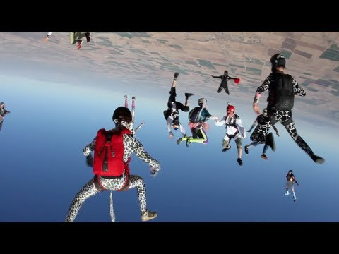 Harlem Shake (Skydive Edition) - THE END