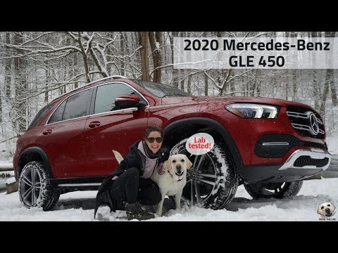2020 Mercedes-Benz GLE 450: Andie the Lab Review! #MercedesBenz #LabTested #AndietheLab