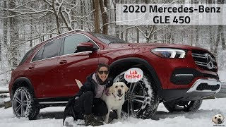 2020 Mercedes-Benz GLE 450: Andie the Lab Review! #MercedesBenz #LabTested #allkindsofstrength
