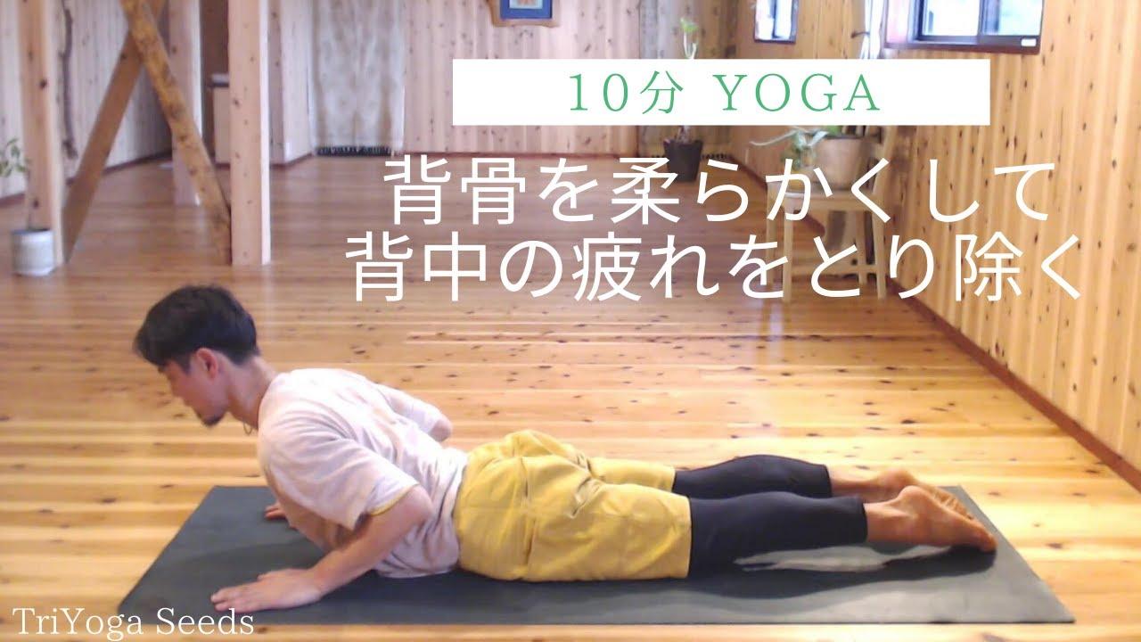 【10分ヨガ】背骨を柔らかくして背中の疲れを取り除く