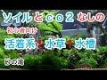 初心者向け水草水槽の作り方 【砂の滝スペシャル】#2【アクアリウム】