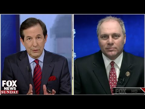 Highlights from Rep Scalise's interview on Fox News Sunday