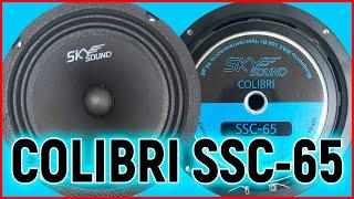 Эстрадная акустика SKYSOUND COLIBRI SSC 65, распаковка, обзор, прослушивание с твитером и 20