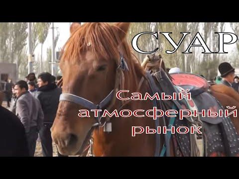 видео: Воскресный животноводческий рынок в Кашгаре Китай